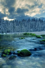 Winter landscape, river, forest, trees, sky, clouds, snow