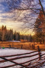 Preview iPhone wallpaper Winter, trees, wood fence, evening