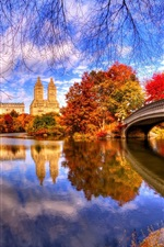 Preview iPhone wallpaper Autumn, nature, park, trees, water, bridge, reflection, Central Park