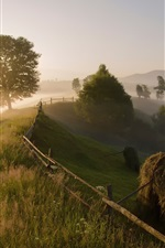 Preview iPhone wallpaper Carpathian mountains, trees, countryside, morning, fog, summer