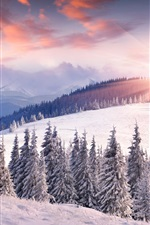 Dawn, winter, snow, sun, mountains, trees