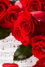 Preview iPhone wallpaper Flowers, red roses, Valentine's Day, music