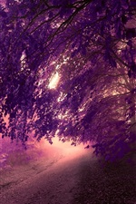 Preview iPhone wallpaper Forest, mist, road, trees, leaves, purple style