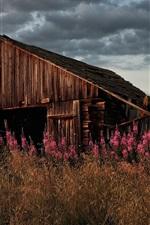 미리보기 iPhone 배경 화면 잔디, 꽃, 버려진 오래된 집