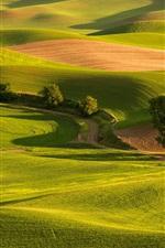 Preview iPhone wallpaper Green fields, grass, hills, trees, road