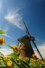 Preview iPhone wallpaper Nature, sunflowers, leaves, windmill, blue sky