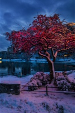 Preview iPhone wallpaper Norway, Rogaland, Stavanger, winter, snow, evening, lights, city, houses