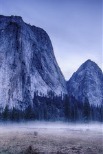 Preview iPhone wallpaper Yosemite National Park, USA, trees, mountains, fog, morning