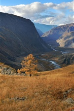 Preview iPhone wallpaper Altai, autumn, grass, mountains, clouds