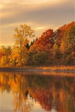 Preview iPhone wallpaper Dusk autumn, forest, lake, water reflection