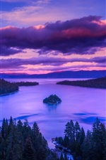 Preview iPhone wallpaper Forest, lake, island, trees, dawn