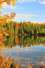 Preview iPhone wallpaper Golden autumn, fall, leaves, sky, pond, lake, clouds, trees