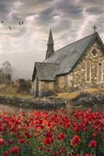 iPhone fondos de pantalla Irlanda, amapolas, iglesia, camino, los pájaros, las nubes