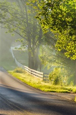 Preview iPhone wallpaper Morning landscape, road, fog, sunlight, trees