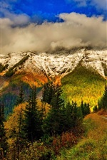 Preview iPhone wallpaper Mountains, sky, clouds, snow, forest, trees, leaves, colorful