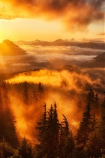 Preview iPhone wallpaper Sky, sunrise, rays, mountains, clouds, trees, fog