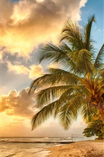 Preview iPhone wallpaper Tropical, paradise, beach, palms, sea, ocean, sunset