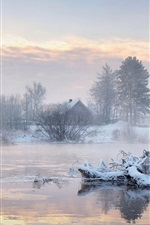Preview iPhone wallpaper Winter morning, trees, houses, lake, swans