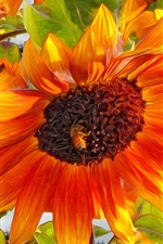 Preview iPhone wallpaper Art design, sunflower, insect, bee