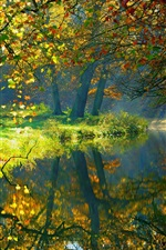 Preview iPhone wallpaper Autumn, river, trees, nature scenery, sunlight