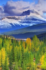 Preview iPhone wallpaper Banff National Park, Alberta, Canada, mountains, sky, forest, trees