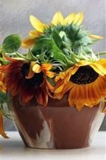 Preview iPhone wallpaper Bouquet flowers, sunflowers, still life