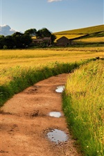 Preview iPhone wallpaper Countryside, England, Britain, fields, road, grass, wind