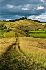 Preview iPhone wallpaper Countryside, sky, clouds, hills, forest, road, meadow, grass, fields