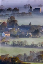 England, morning, houses, fields, trees, fog