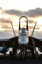 Preview iPhone wallpaper FA-18E Super Hornet, aircraft, fighter