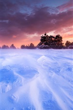 Preview iPhone wallpaper France, Provence, plains, snow, winter, trees, sunset