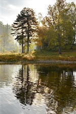 Lake, island, trees, mist, morning, nature landscape