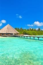 Maldives, sky, sea, ocean, island, palm trees, bungalows, bridge, pier