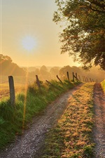 Preview iPhone wallpaper Sunset, trees, road, grass, fence