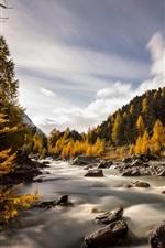 Preview iPhone wallpaper Switzerland, Val Roseg, autumn, river, trees, rocks