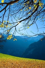 Preview iPhone wallpaper Autumn, trees, foliage, mountains, blue sky, sun