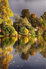 Preview iPhone wallpaper Autumn, trees, pond, lake, ducks