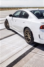 Dodge Charger SRT white car back view