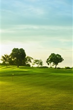 Golf course, green grass, trees