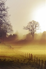 Preview iPhone wallpaper Morning, fields, fence, fog