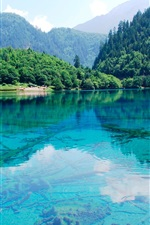 Preview iPhone wallpaper Mountain, lake, forest, water reflection