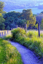 Preview iPhone wallpaper Nature scenery, fence, road, grass, trees