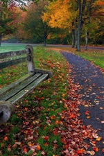 Preview iPhone wallpaper Park, trees, leaves, grass, road, bench, colors, autumn
