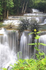 Preview iPhone wallpaper Thailand, forest, jungle, river, waterfalls, stream, trees
