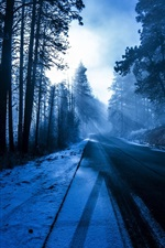 Preview iPhone wallpaper Trees, forest, road, snow, winter, sun rays, blue
