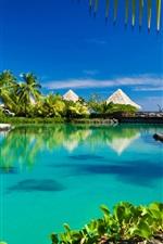 Preview iPhone wallpaper Tropical, paradise, palm trees, sea, ocean, beach, sunshine