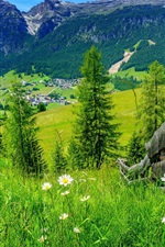 Preview iPhone wallpaper Village, house, grass, flowers, fence, trees, mountains, summer