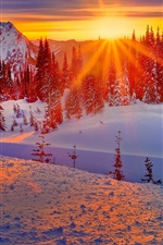 Preview iPhone wallpaper Washington, USA, winter, mountains, trees, snow, sunset