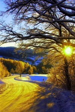 Preview iPhone wallpaper Winter morning, snow, trees, road, sunrise