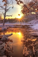 Preview iPhone wallpaper Winter, snow, forest, trees, river, dawn, sunrise